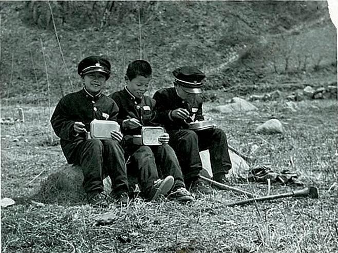 식목일 나무 심기에 참가한 중학생 삼총사가 집에서 싸 온 도시락을 먹고 있다. 1970년 [강원교육청 제공]