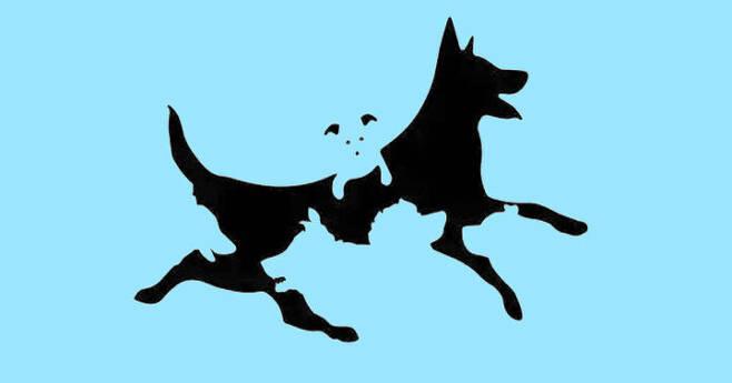출처: [정신연령 테스트] 강아지를 모두 찾아보세요!
