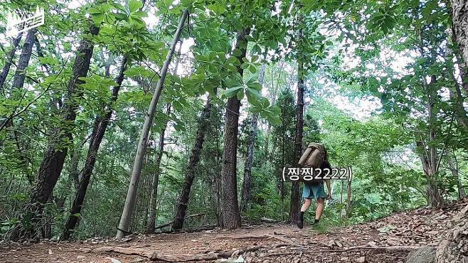 출처: 캠핑모드 유튜브 채널
