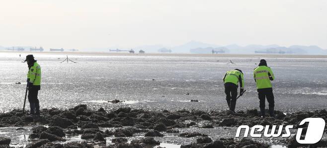 12일 밤 전북 고창군 심원면 한 갯벌에서 실종된 것으로 신고된 60대가 아무 일 없이 돌아왔다.(자료사진) /뉴스1