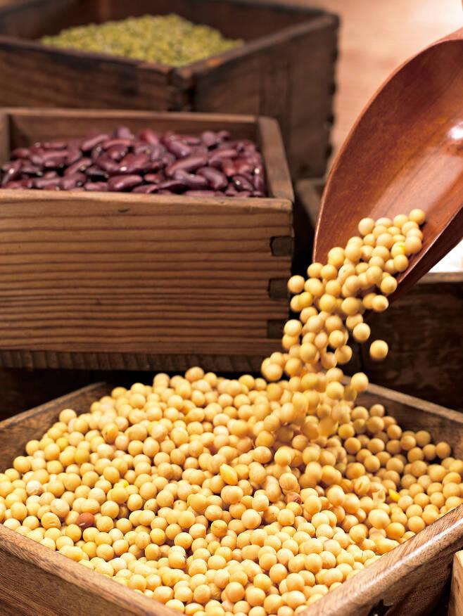 콩(대두). 게티이미지뱅크