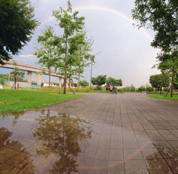 19일 서울 한강시민공원 성산지구에서 바라본 하늘에 쌍무지개가 떠 있다. 연합뉴스