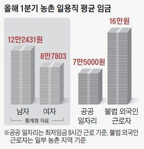 농촌 일용직 평균 임금