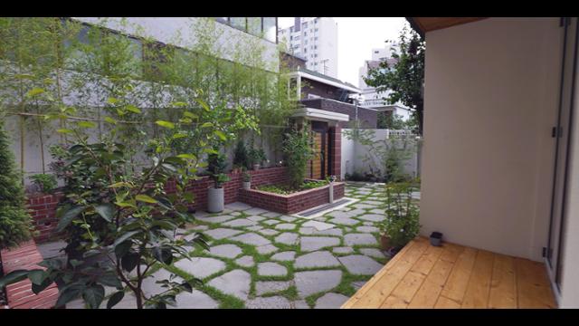 마당 전경. 이웃집과의 시야를 차단하기 위해 2층 높이의 대나무를 심었다. 한국일보 영상팀 제공